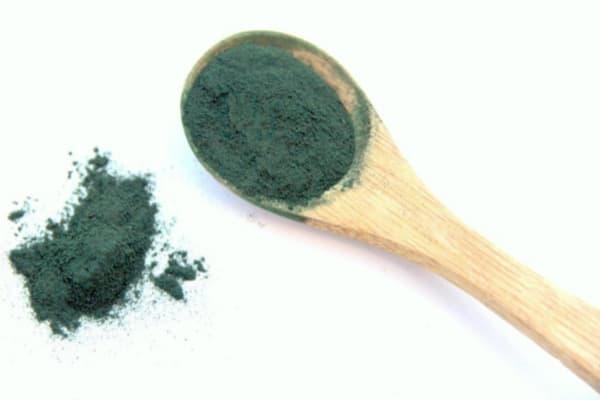 Chronique des Diets d'EOLE ; les algues